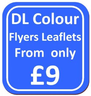 DL Single Sided Flyers Leaflets